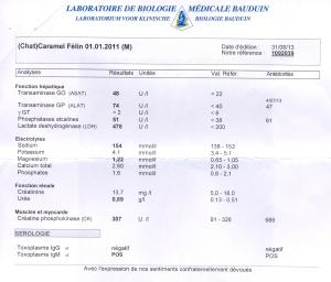 2-Caramel - Analyses de sang du 26.08.13