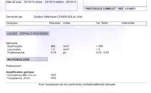 LCR & PCR de Caramel - 23.10.13