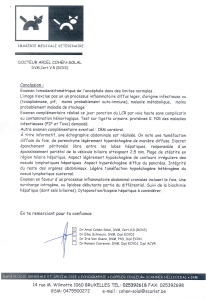 Protocole du scanner  cérébrale de Caramel - 23.10.13 -2